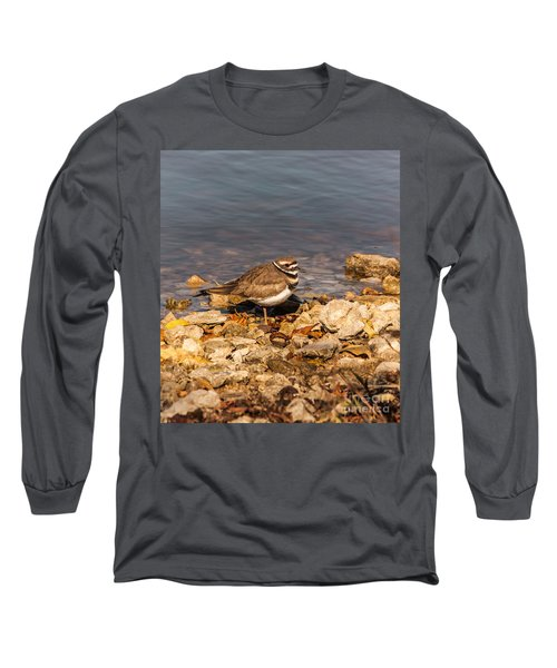 Kildeer On The Rocks Long Sleeve T-Shirt by Robert Frederick