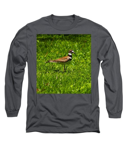 Killdeer Charadrius Vociferus 2 Long Sleeve T-Shirt by Howard Tenke