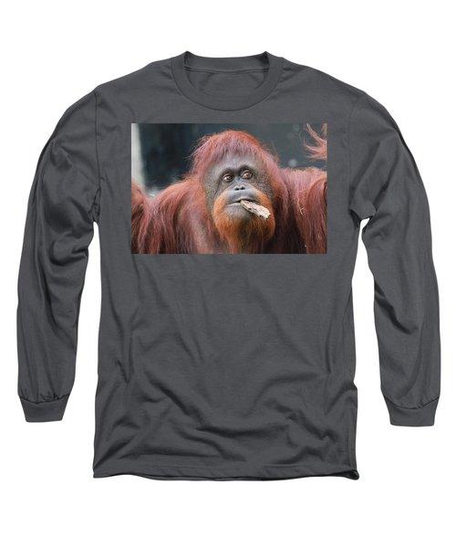 Orangutan Portrait Long Sleeve T-Shirt by Dan Sproul