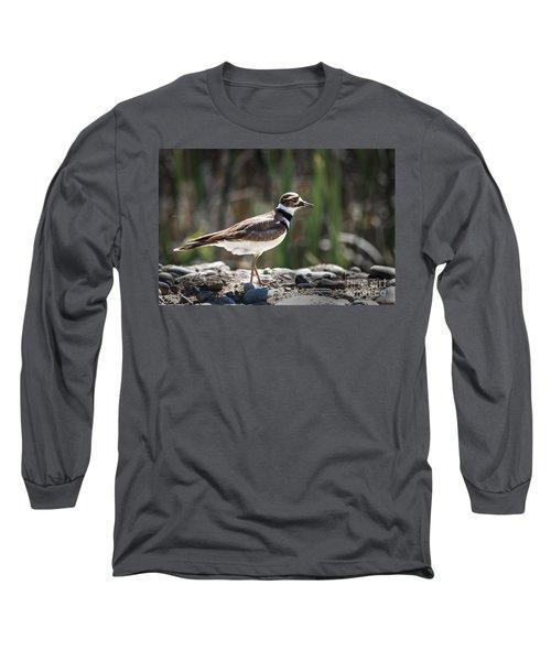 The Killdeer Long Sleeve T-Shirt by Robert Bales