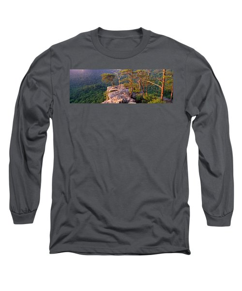 Trees On A Mountain, Buzzards Roost Long Sleeve T-Shirt by Panoramic Images