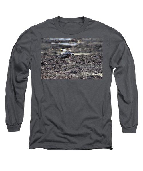 Gracious Ascent Long Sleeve T-Shirt by Douglas Barnard