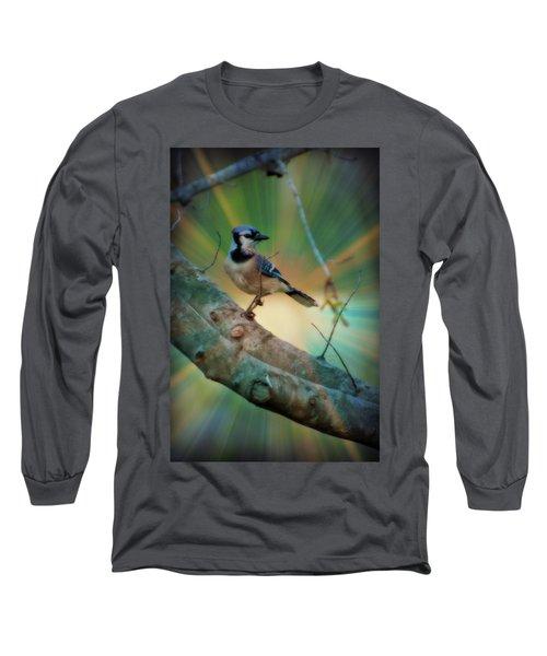 Baby Blue Long Sleeve T-Shirt by Trish Tritz
