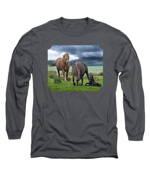 Dartmoor Ponies Long Sleeve T-Shirt by Gill Billington
