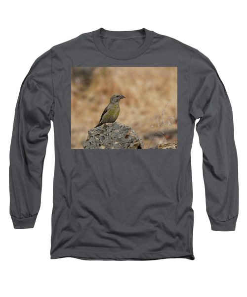 Female Red Crossbill Long Sleeve T-Shirt by Doug Lloyd