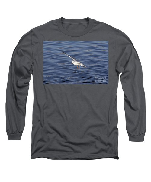 Flying Gull Long Sleeve T-Shirt by Michal Boubin