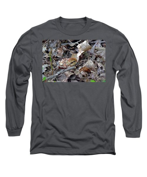 It's A Baby Grouse Long Sleeve T-Shirt by Asbed Iskedjian