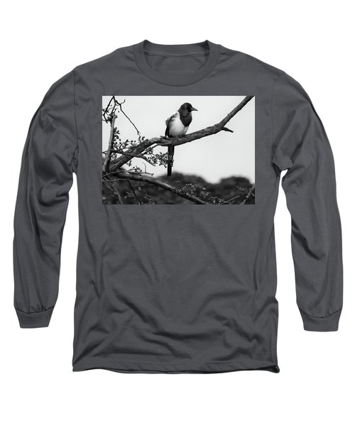 Magpie  Long Sleeve T-Shirt by Philip Openshaw