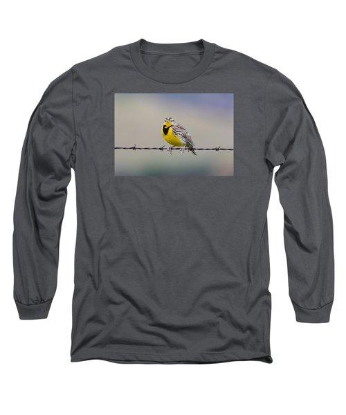 Meadowlark Stare Long Sleeve T-Shirt by Marc Crumpler