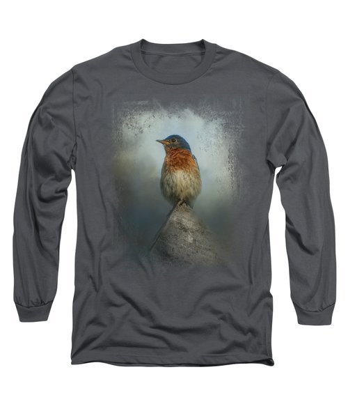 The Highest Point Long Sleeve T-Shirt by Jai Johnson