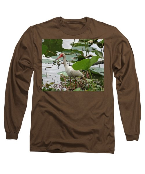American White Ibis In Brazos Bend Long Sleeve T-Shirt by Dan Sproul