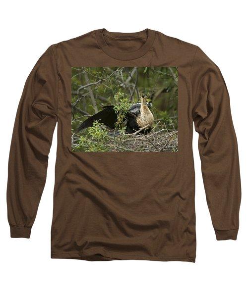 Anhinga Mama Long Sleeve T-Shirt by Phill Doherty