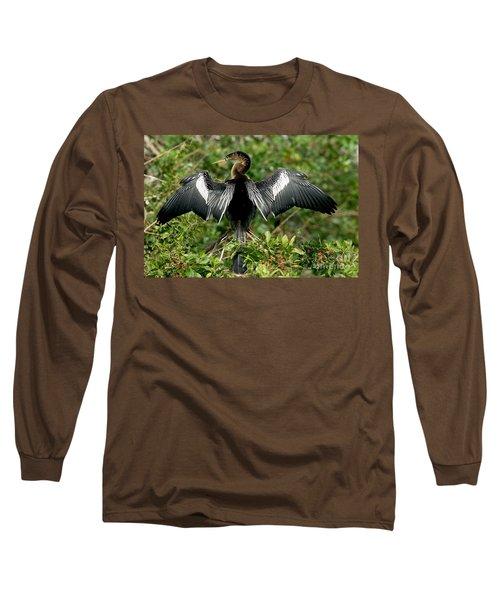 Anhinga Sunning Long Sleeve T-Shirt by Anthony Mercieca
