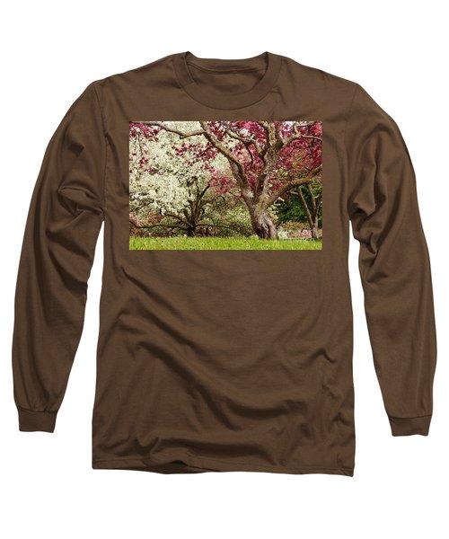 Apple Blossom Colors Long Sleeve T-Shirt by Joe Mamer