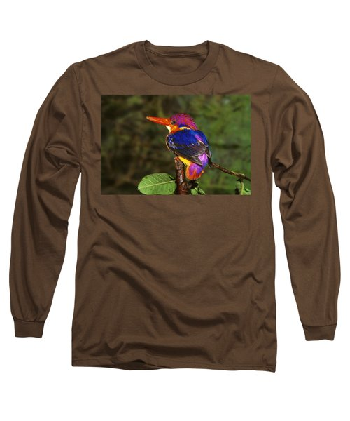 India Three Toed Kingfisher Long Sleeve T-Shirt by Anonymous