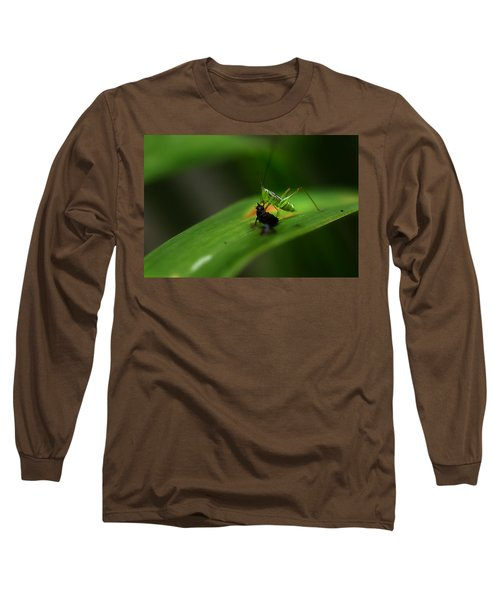 Lunch Time Long Sleeve T-Shirt by Michael Eingle