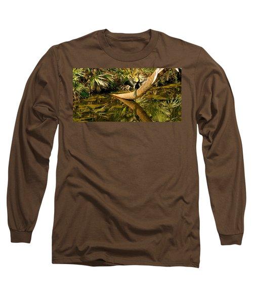 Oriental Darter Anhinga Melanogaster Long Sleeve T-Shirt by Panoramic Images