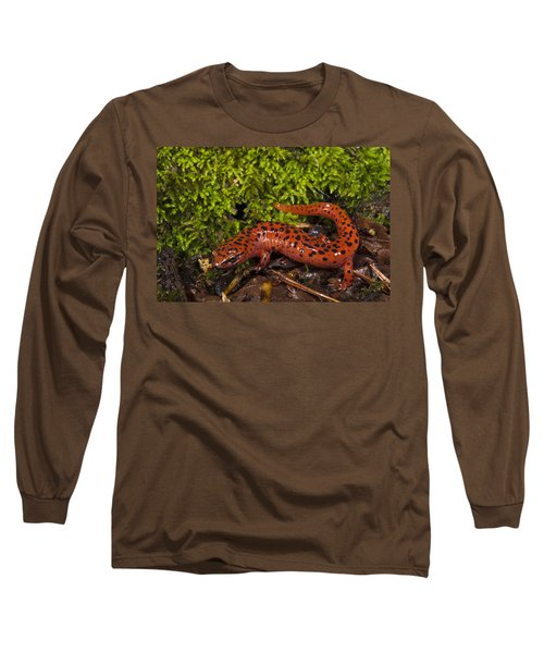 Red Salamander Pseudotriton Ruber Long Sleeve T-Shirt by Pete Oxford
