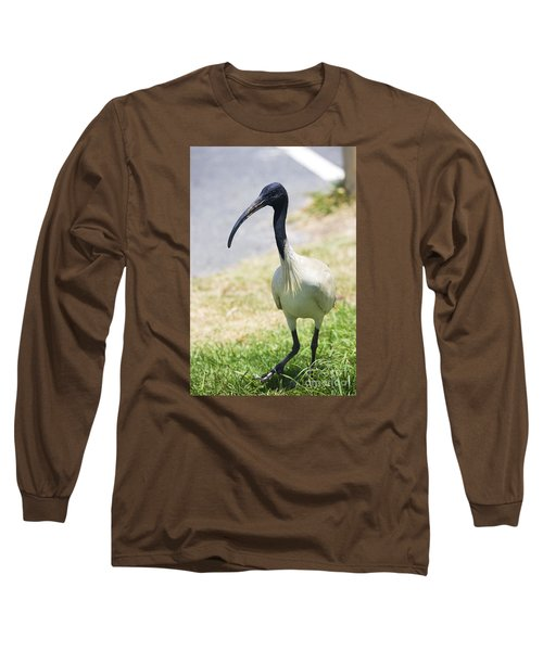 Carpark Ibis Long Sleeve T-Shirt by Jorgo Photography - Wall Art Gallery