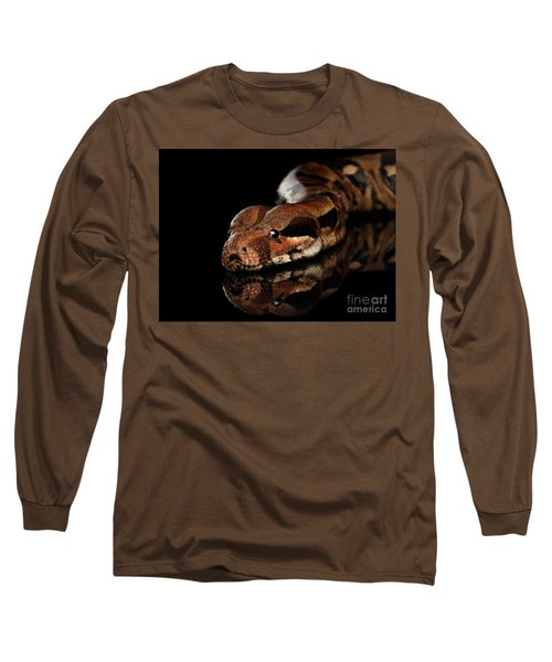 The Boa Constrictors, Isolated On Black Background Long Sleeve T-Shirt by Sergey Taran