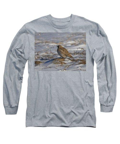 Winter Bird Long Sleeve T-Shirt by Jeff Swan