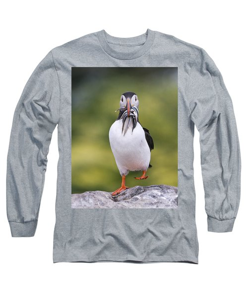 Atlantic Puffin Carrying Greater Sand Long Sleeve T-Shirt by Franka Slothouber