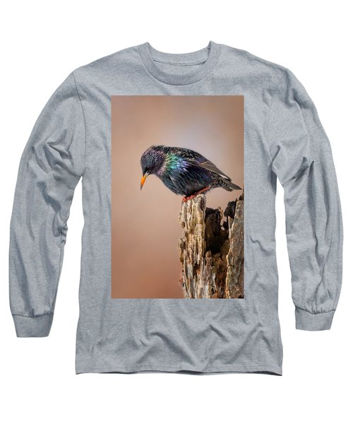 Backyard Birds European Starling Long Sleeve T-Shirt by Bill Wakeley