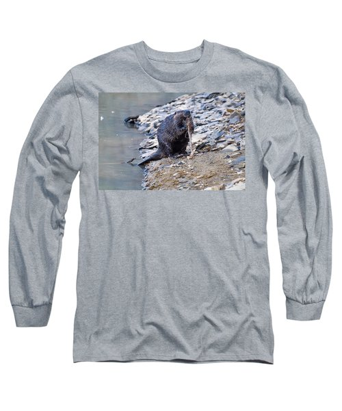 Beaver Sharpens Stick Long Sleeve T-Shirt by Chris Flees