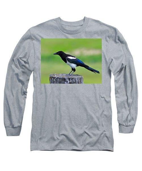 Black Billed Magpie Long Sleeve T-Shirt by Karon Melillo DeVega