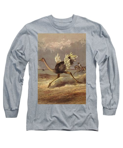 Chasing The Ostrich Long Sleeve T-Shirt by English School