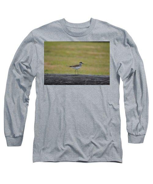 Killdeer Long Sleeve T-Shirt by James Petersen