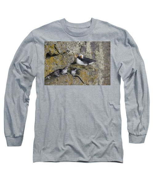 Least Auklets Perched On A Narrow Ledge Long Sleeve T-Shirt by Milo Burcham