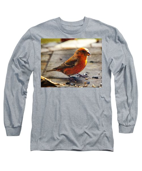 Look - I'm A Crossbill Long Sleeve T-Shirt by Robert L Jackson