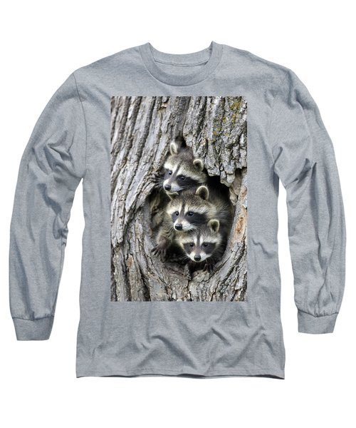 Raccoon Trio At Den Minnesota Long Sleeve T-Shirt by Jurgen & Christine Sohns