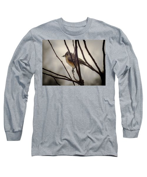Tufted Titmouse Long Sleeve T-Shirt by Karen Wiles