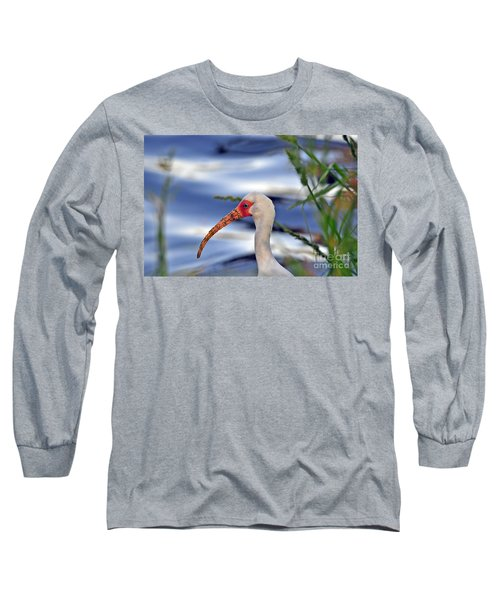 Intriguing Ibis Long Sleeve T-Shirt by Al Powell Photography USA
