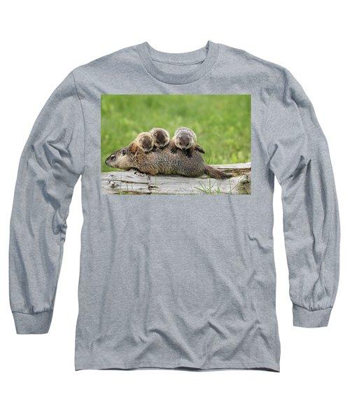 Woodchuck Carrying Young Minnesota Long Sleeve T-Shirt by Jurgen & Christine Sohns