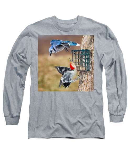 Woodpeckers And Blue Jays Square Long Sleeve T-Shirt by Bill Wakeley