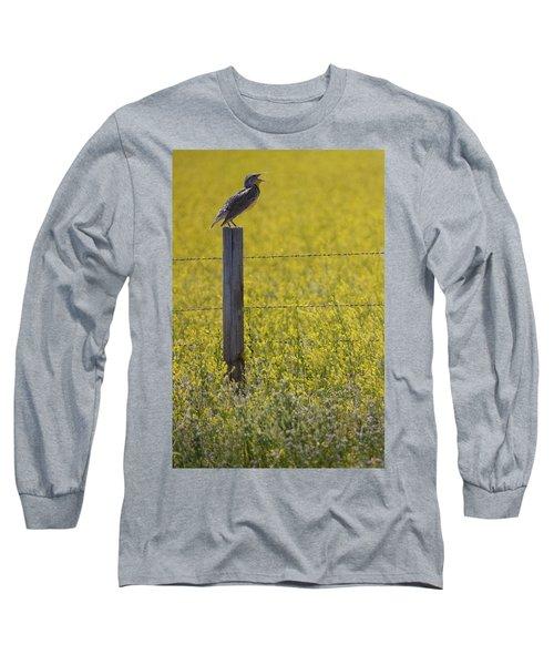 Meadowlark Singing Long Sleeve T-Shirt by Randall Nyhof