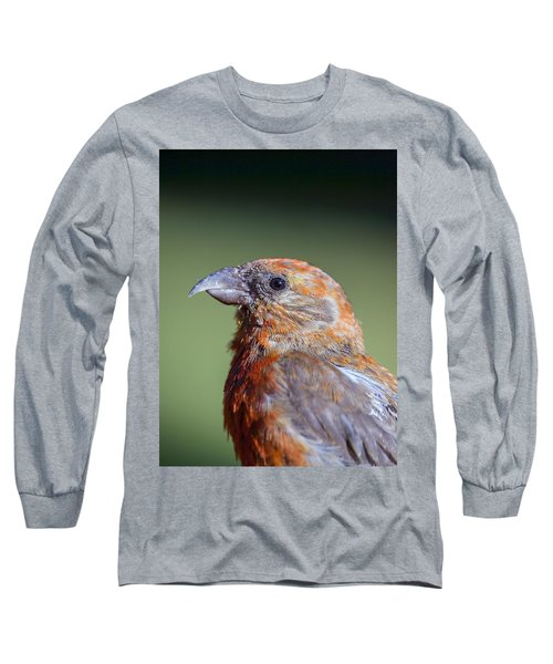 Red Crossbill Long Sleeve T-Shirt by Derek Holzapfel
