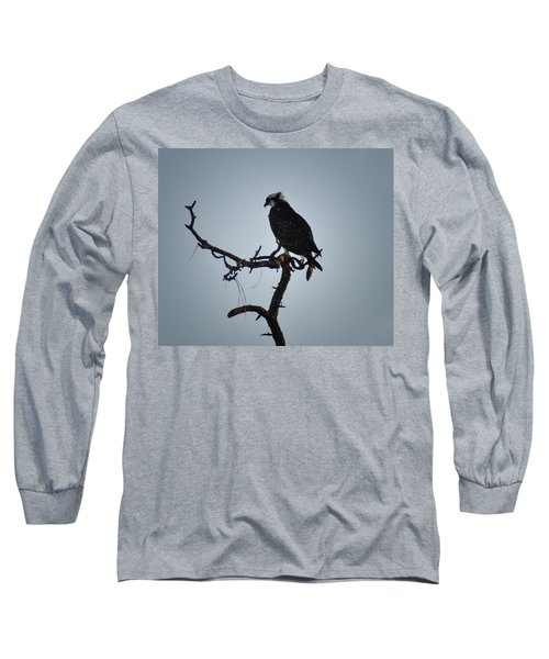 The Osprey Long Sleeve T-Shirt by Bill Cannon