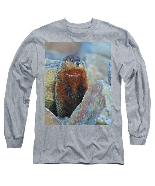 Woodchuck Long Sleeve T-Shirt by Tony Beck