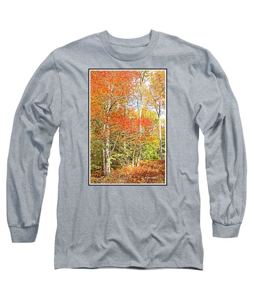 Long Sleeve T-Shirt featuring the digital art Forest Interior Autumn Pocono Mountains Pennsylvania by A Gurmankin