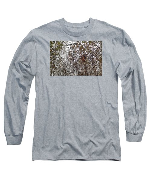 American Woodcock In October Foliage Long Sleeve T-Shirt by Asbed Iskedjian
