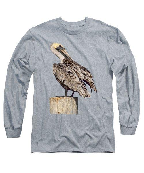 Brown Pelican - Preening - Transparent Long Sleeve T-Shirt by Nikolyn McDonald