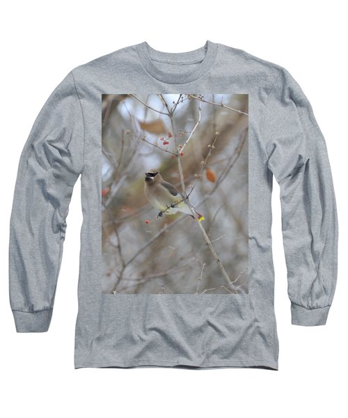 Cedar Wax Wing 2 Long Sleeve T-Shirt by David Arment