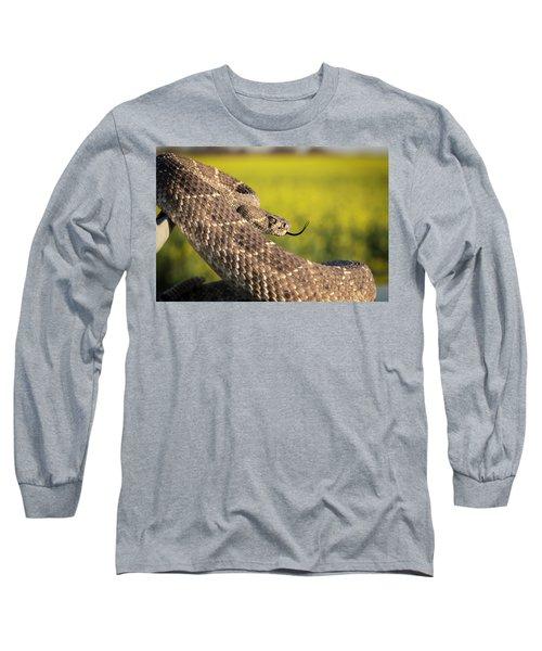 Diamondback And Canola Field Long Sleeve T-Shirt by Chris Harris