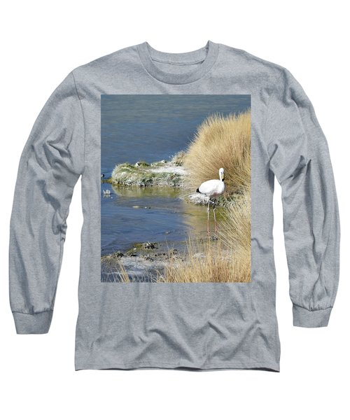 Juvenile Flamingo No. 64 Long Sleeve T-Shirt by Sandy Taylor