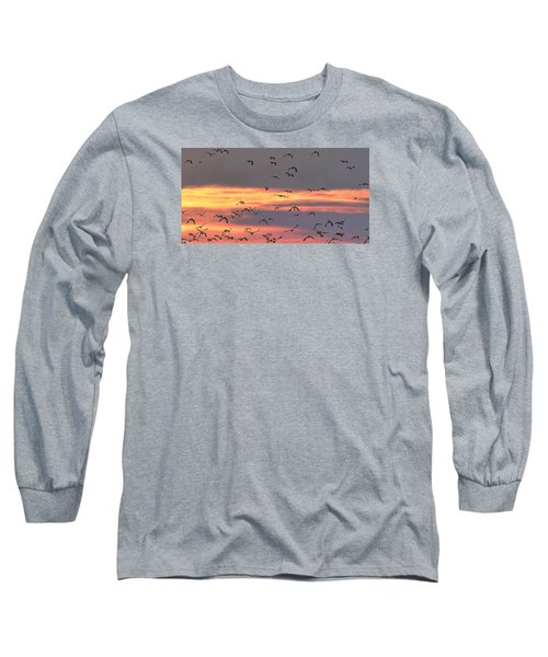 Lapwings At Sunset Long Sleeve T-Shirt by Jeff Townsend