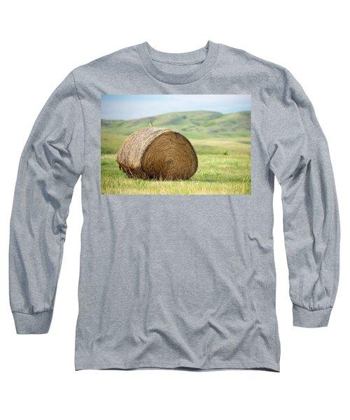 Meadowlark Heaven Long Sleeve T-Shirt by Todd Klassy